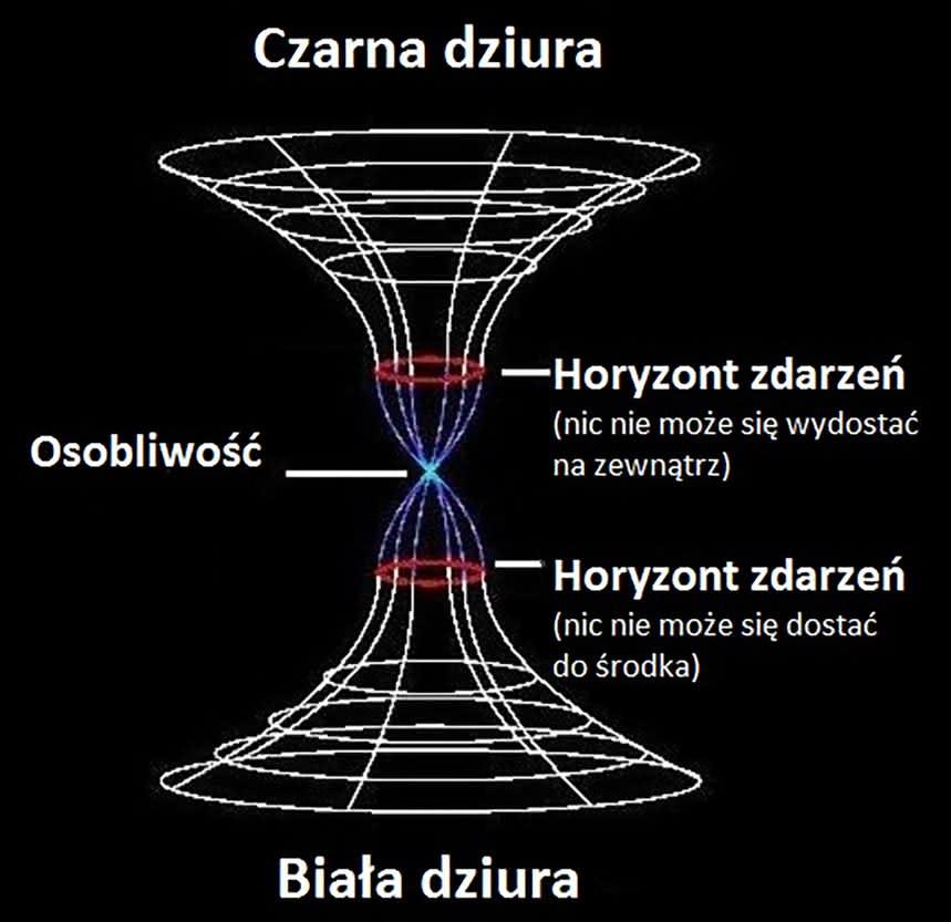 dz04NjAmaD04MzM=_src_14567-2.2-Czarna-i-